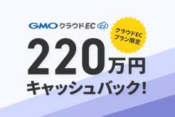 220万円キャッシュバックキャンペーン